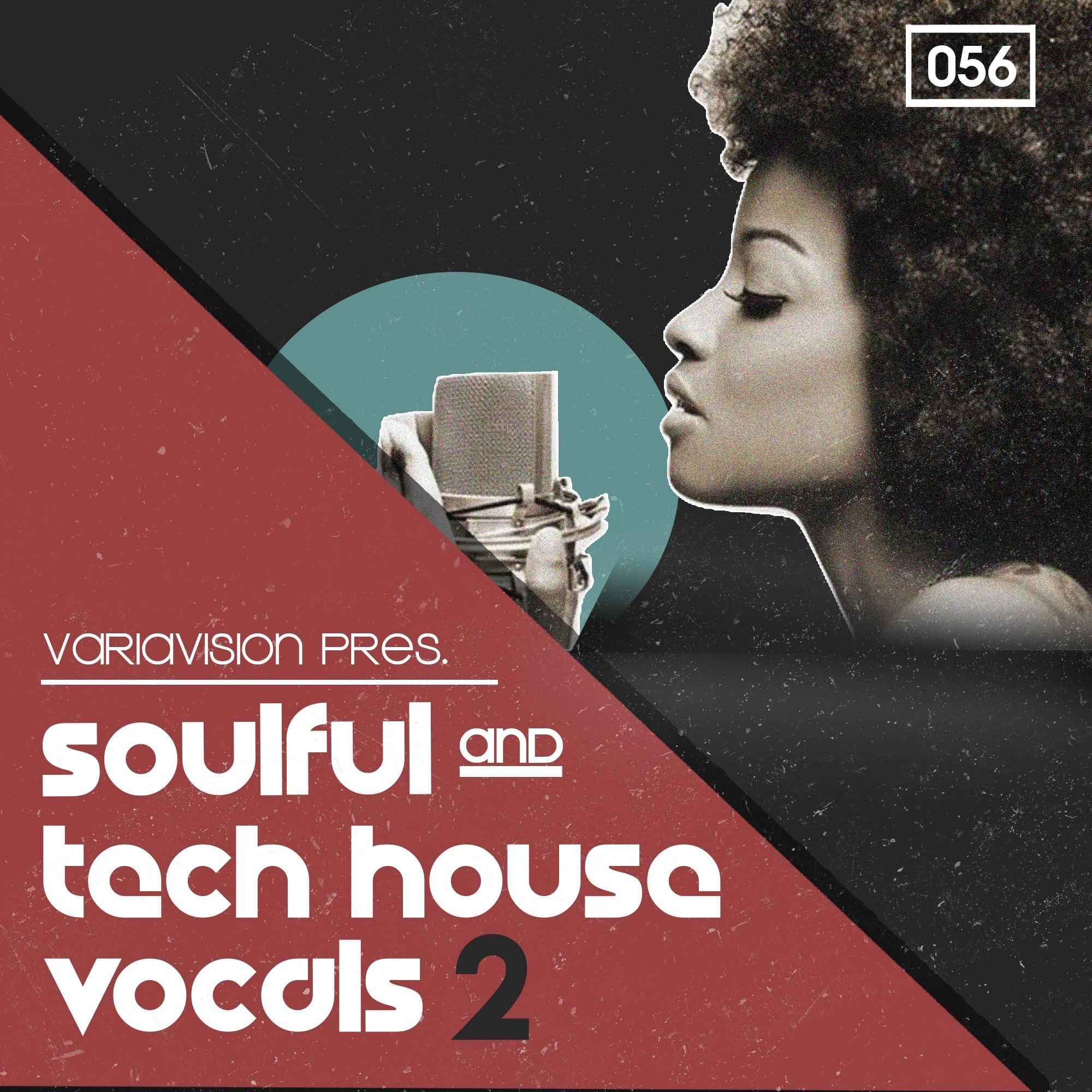 Bingoshakerz Soulful & Tech House Vocals 2