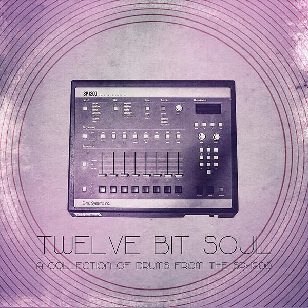 Divided Souls Productions 12 Bit Soul